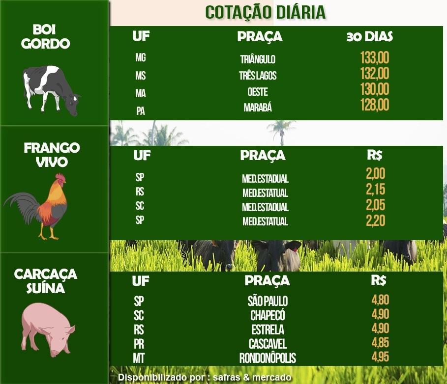 Boi gordo, frango e suíno registram alta nos preços, nesta quinta-feira (3)