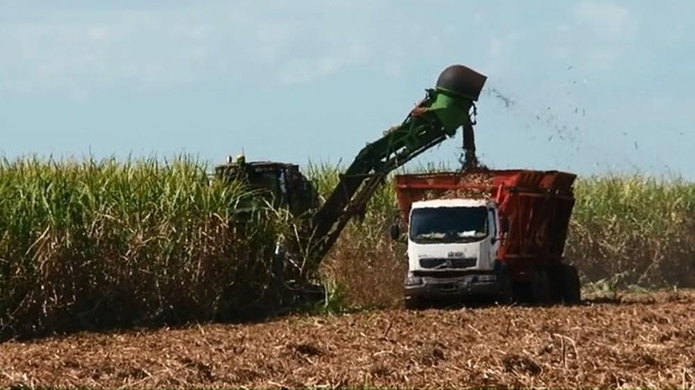 Preço do etanol deve ficar mais competitivo em relação à gasolina, diz Alcopar
