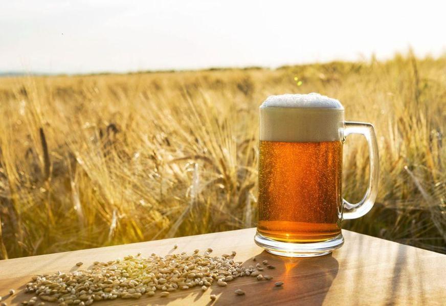 Aquecimento global pode elevar valor da cerveja