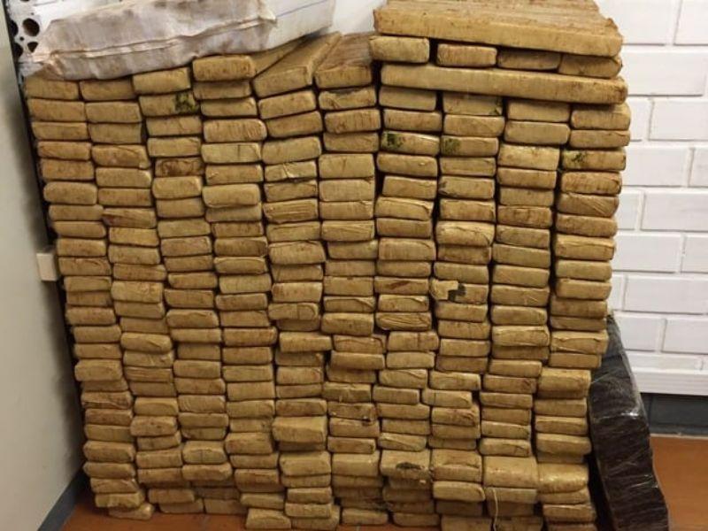 Caminhoneiro de Laranjeiras do Sul é preso com quase meia tonelada de maconha no pedágio do Relógio