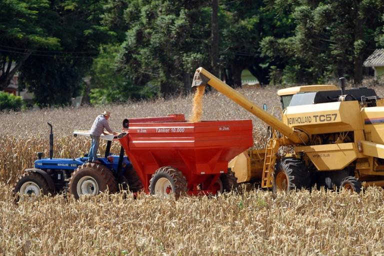 Safra de grãos no Paraná deve ser 4% maior que a do ano passado