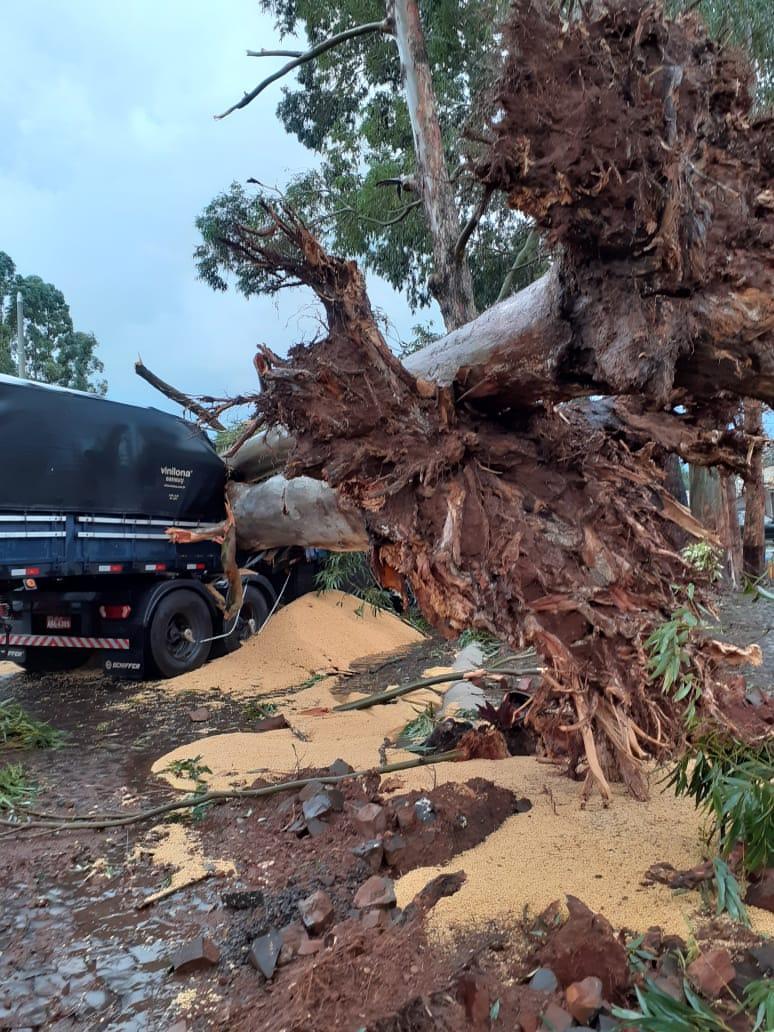 Fortes ventos acompanhados de chuva e granizo causam estragos em Laranjeiras e região