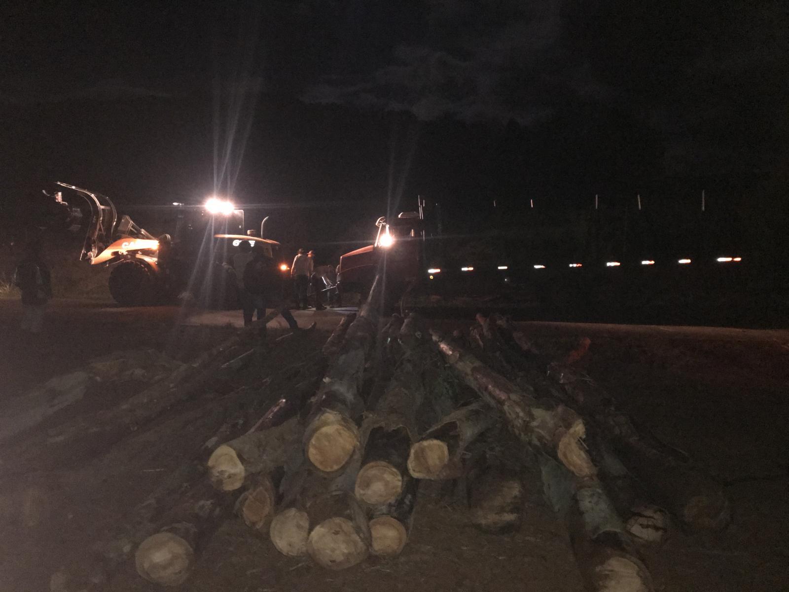 Caminhão carregado com toras de madeira tomba em Porto Barreiro