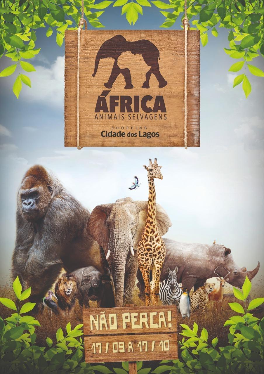 """Shopping Cidade dos Lagos recebe hoje exposição """"Africa, animais selvagens""""."""